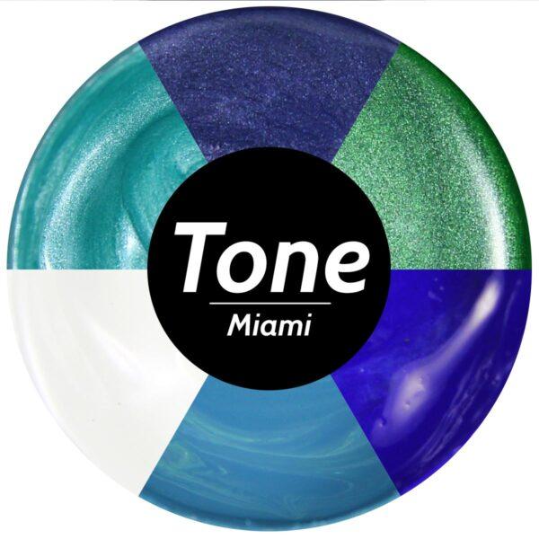 Tone Miami Epoxy Pigment Set